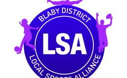 Image: Blaby District LSA